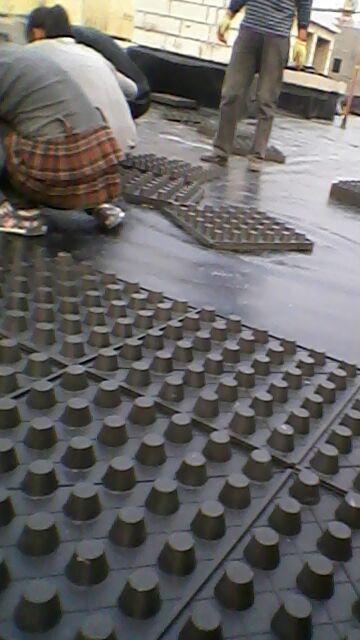 车库绿化为什么用排水板?